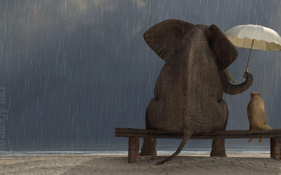 7 raisons pour lesquelles l'humilité contribue à la confiance en soi